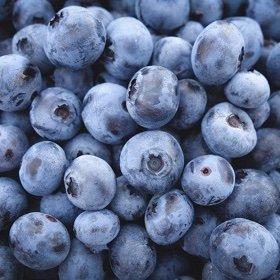 SH Nutrition blueberries