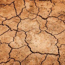 SH Health Dry Clay